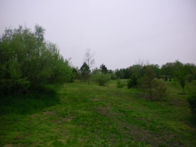 Burchfield Park, Renegades Trail, Hole 12 Short tee pad