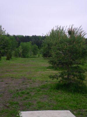 Burchfield Park, Renegades Trail, Hole 11 Short tee pad