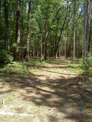 Big Bend Park, Main course, Hole 18 Long tee pad