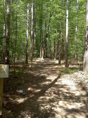 Big Bend Park, Main course, Hole 2 Long tee pad