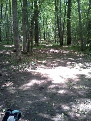 Big Bend Park, Main course, Hole 10 Long tee pad