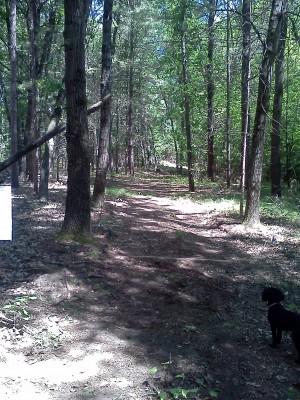 Big Bend Park, Main course, Hole 6 Long tee pad
