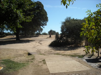 Shady Oaks Park, Main course, Hole 1 Tee pad