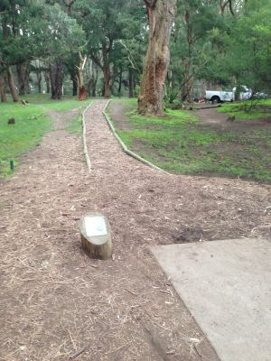 Golden Gate Park, Main course, Hole 6 Tee pad