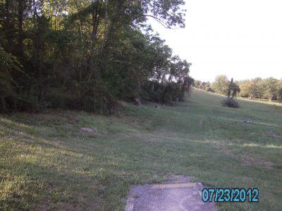Dorsey's Knob DGC, Main course, Hole 8