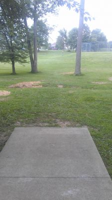 River Hill Park, Main course, Hole 8 Tee pad