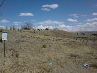 New Mexico Highlands University, Main course, Hole 5 Long tee pad