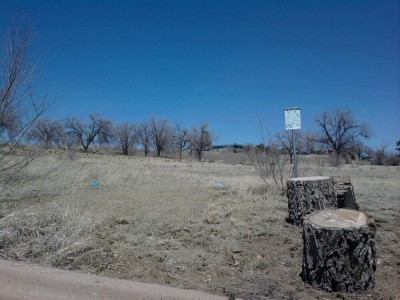 New Mexico Highlands University, Main course, Hole 1 Long tee pad