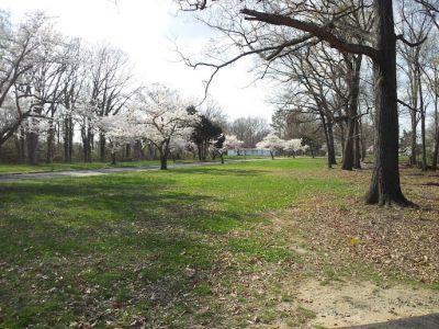 John G. Lancaster Park, Hot Shots DGC, Hole 9 Tee pad