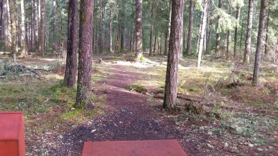 Shelton Springs DGC, Main course, Hole 12 Short tee pad