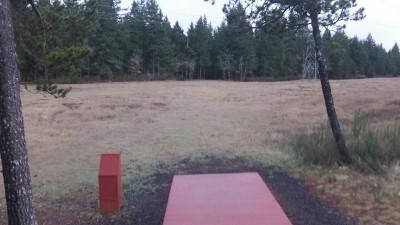 Shelton Springs DGC, Main course, Hole 3 Short tee pad
