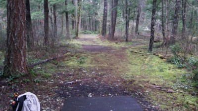 Shelton Springs DGC, Main course, Hole 4 Long tee pad