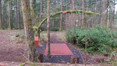 Shelton Springs DGC, Main course, Hole 13 Short tee pad