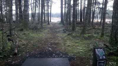 Shelton Springs DGC, Main course, Hole 2 Long tee pad