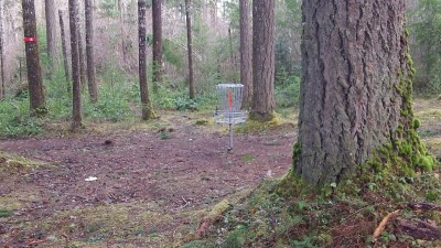 Shelton Springs DGC, Main course, Hole 14 Putt