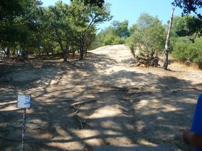 DeLaveaga Park, Main course, Hole 2 Tee pad