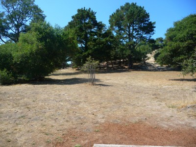 DeLaveaga Park, Main course, Hole 1 Tee pad