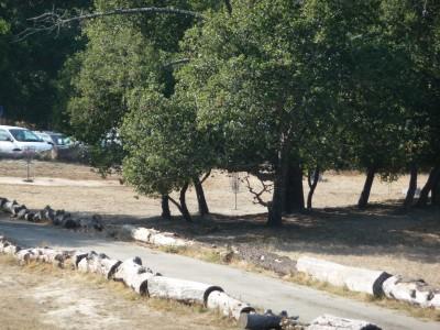 DeLaveaga Park, Main course, Hole 22 Long approach
