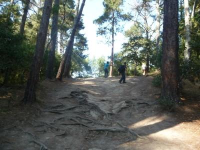 DeLaveaga Park, Main course, Hole 18 Long approach