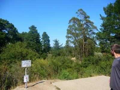 DeLaveaga Park, Main course, Hole 13 Tee pad