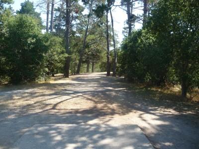 DeLaveaga Park, Main course, Hole 7 Tee pad