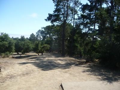 DeLaveaga Park, Main course, Hole 3 Tee pad