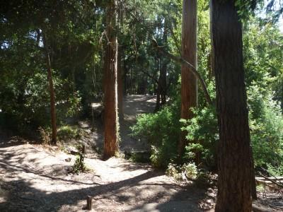 DeLaveaga Park, Main course, Hole 9 Tee pad
