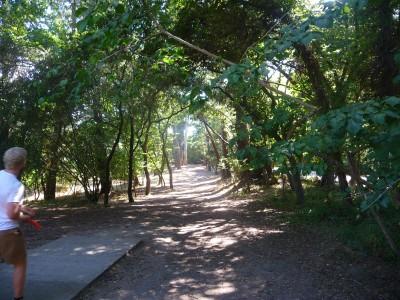 DeLaveaga Park, Main course, Hole 12 Tee pad