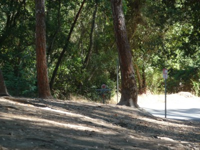 DeLaveaga Park, Main course, Hole 8 Short approach