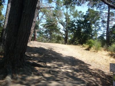 DeLaveaga Park, Main course, Hole 4 Tee pad