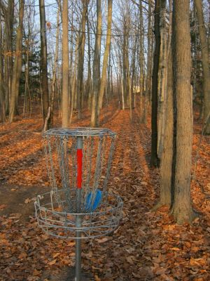 Kiwanis Park, Crowle Hole, Hole 4 Reverse (back up the fairway)