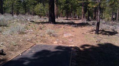 Turtle Rock Park, Main course, Hole 6 Tee pad