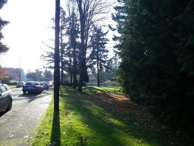 Northwest University, Northwest University DGC, Hole 6 Tee pad