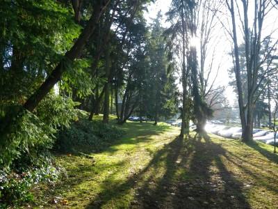 Northwest University, Northwest University DGC, Hole 9 Tee pad