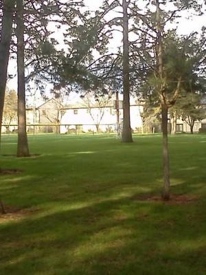 Salnave Park, Reitan DGC, Hole 3 Tee pad