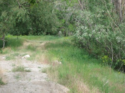Brigham Frog Pond, Main course, Hole 5 Midrange approach