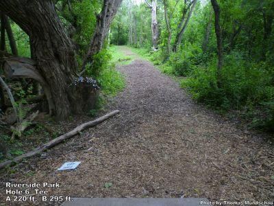 Riverside Park, Main course, Hole 6 Tee pad