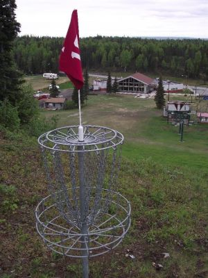 Hilltop DGC, Main course, Hole 16 Putt