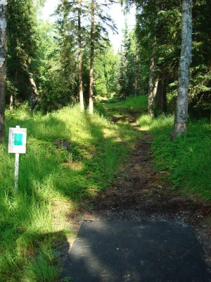 Hilltop DGC, Main course, Hole 12 Tee pad