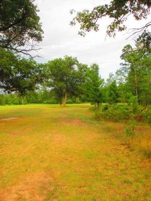 Hanson Hills Recreation Area, Grayling Rotary Pine Knoll DGC, Hole 8 Long tee pad