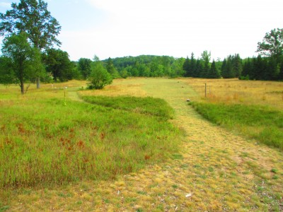 Hanson Hills Recreation Area, Grayling Rotary Pine Knoll DGC, Hole 7 Long tee pad
