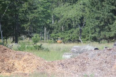 Hanson Hills Recreation Area, Grayling Rotary Pine Knoll DGC, Hole 8