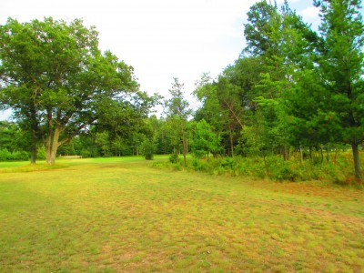 Hanson Hills Recreation Area, Grayling Rotary Pine Knoll DGC, Hole 8 Short tee pad