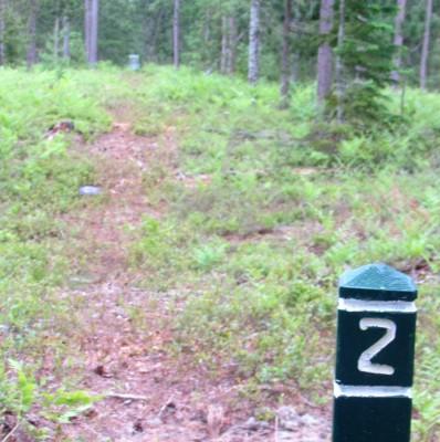 Superior Pines, Main course, Hole 2 Tee pad