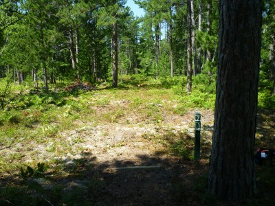 Superior Pines, Main course, Hole 7 Tee pad