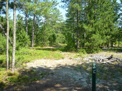 Superior Pines, Main course, Hole 5 Tee pad
