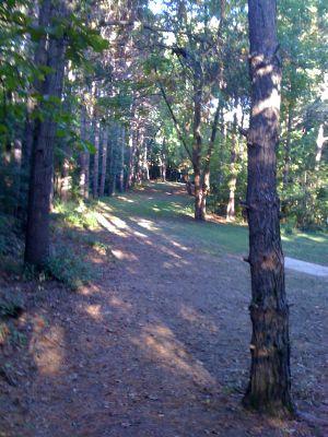 Zobel Park, Main course, Hole 2 Long tee pad