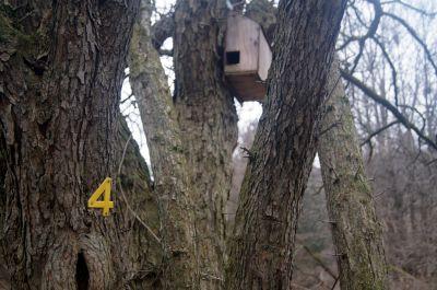 E.T. Seton Park, Main course, Hole 4