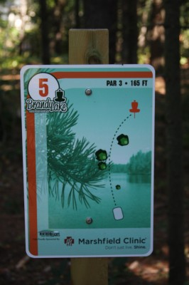 Brandy Lake Park, Main course, Hole 5 Tee pad