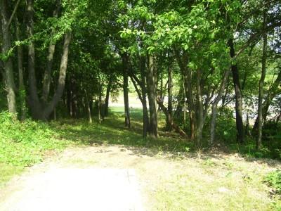 Schneider Park, Main course, Hole 8 Tee pad